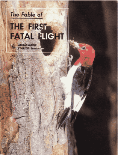 The First Fatal Flight