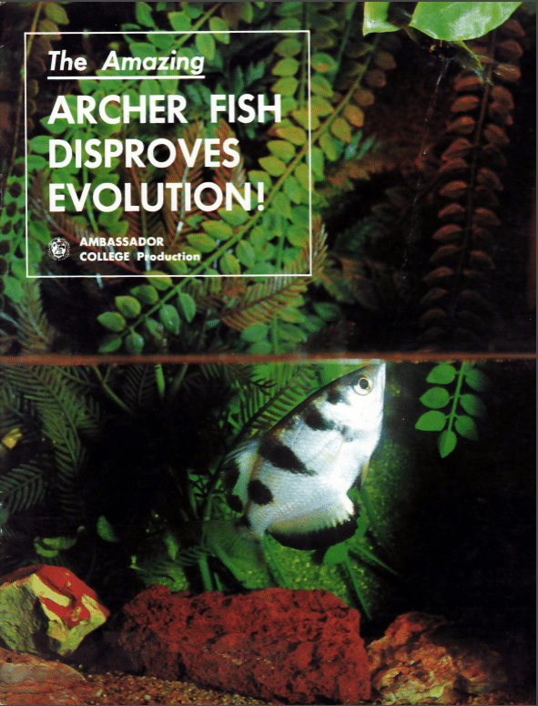 The Amazing Archer Fish Disproves Evolution